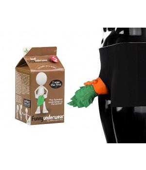 Idea regalo- Boxer con foglia Funny Underwear - Leaf (lingerie)